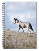 Alpha Dog Spiral Notebook