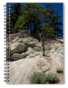 Alpine Pine Hangs On For Life Spiral Notebook