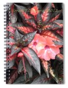 Amazing Hues Of Nature Spiral Notebook