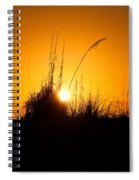 Amber Waves Spiral Notebook