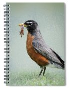 American Robin With Worms Spiral Notebook