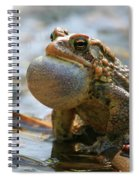 American Toad Croaking Spiral Notebook
