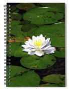 American White Waterlily Spiral Notebook