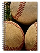America's Pastime Spiral Notebook