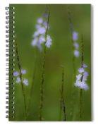 Amongst The Clover Spiral Notebook