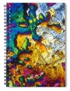 Ampicillin Lm Spiral Notebook