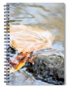 An Autumn Day's Rest Spiral Notebook