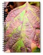 An Autumn's Leaf Spiral Notebook