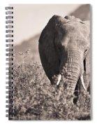 An Elephant Walking In The Bush Samburu Spiral Notebook