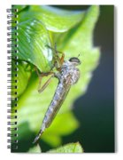 An Insect Resting  Spiral Notebook