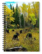 An Old Clear Cut In Autumn  Spiral Notebook