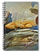 An Old Warrior Comes Home Spiral Notebook