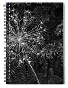 Anatomy Of A Flower Monochrome 2 Spiral Notebook