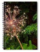 Anatomy Of A Flower Spiral Notebook