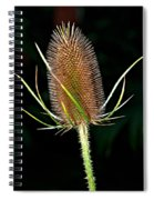 Anatomy Of A Weed Spiral Notebook