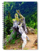 Ancient And On The Edge Spiral Notebook