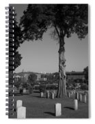Ancient Cedars And Tombstones Spiral Notebook