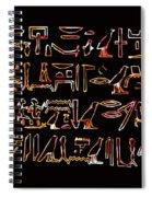 Ancient Egyptian Hieroglyphs Spiral Notebook