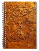 Ancient Treasure 2 Spiral Notebook