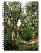 Ancient Woodland Spiral Notebook
