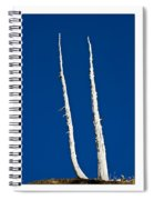 Ancients Stand Spiral Notebook