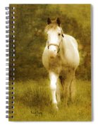 Andre On The Farm Spiral Notebook
