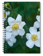 Anemone Cluster 1 Spiral Notebook