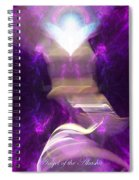 Angel Of The Akasha Spiral Notebook