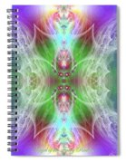 Angel Of The Faery Realm Spiral Notebook