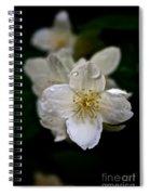 Angel Teardrops Spiral Notebook
