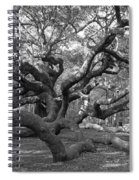 Angel Tree II Spiral Notebook