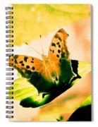 Angel Wing In Bright Pastels Spiral Notebook