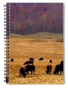 Angus And Oaks  Farm Spiral Notebook