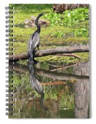 Anhinga And Reflection Spiral Notebook