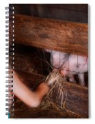Animal - Pig - Feeding Piglets  Spiral Notebook