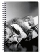 Animal Research Spiral Notebook
