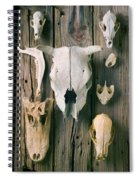 Animal Skulls Spiral Notebook