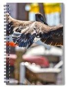 Animals Humans Spiral Notebook
