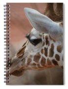 Another Giraffe Spiral Notebook