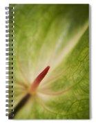 Anthurium Macro Spiral Notebook