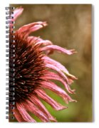 Antique Cone Flower Spiral Notebook