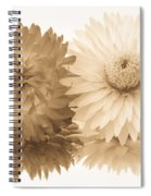 Antique Floral Duo Spiral Notebook