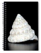 Antique White Spiral Notebook