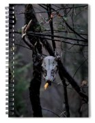 Antlers - Skull - In The Air Spiral Notebook