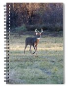 Antlers In The Sun Spiral Notebook