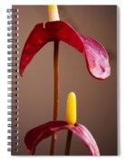 Anturium Spiral Notebook