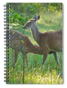 Any Day Now Spiral Notebook
