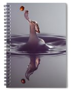 Anyone For Tennis Spiral Notebook