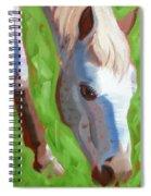 Appaloosa Spiral Notebook
