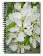 Apple Blossoms On The Trail Spiral Notebook